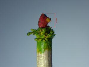 Roter Jungvogel im Nest hockend nach rechts blickend.