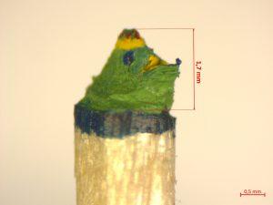 Hockender grüner Frosch mit Krone