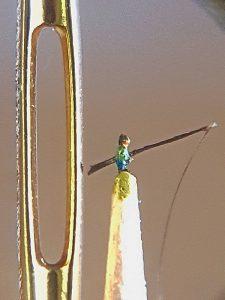 Angler, 1,4 mm klein neben einem Nadelöhr